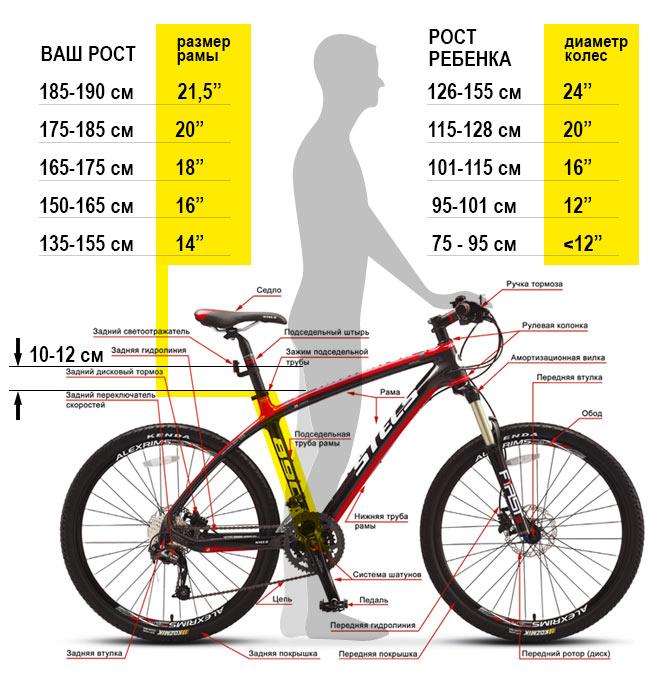 Картинки по запросу Велосипеды для подростков: что нужно учесть при их выборе?