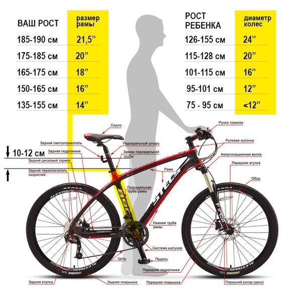 Подбор ростовки перед покупкой велосипеда